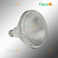 E27 PAR 38 Non Dimmable